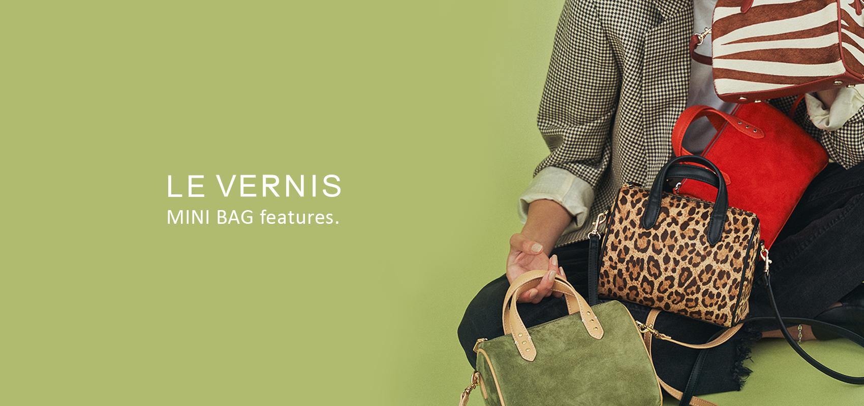 LE VERNIS MINI BAG features.