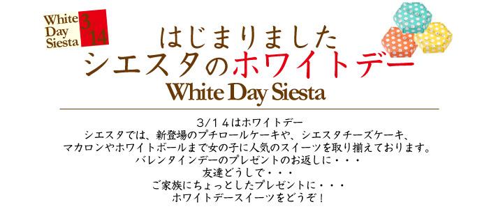 シエスタのホワイトデー