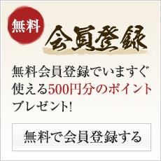 無料会員登録でいますぐ使える500円分のポイントプレゼント!