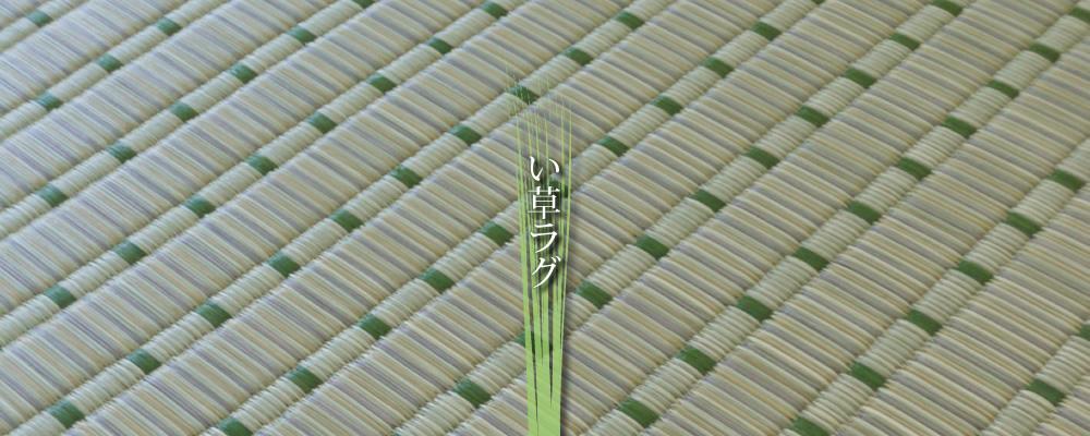 家具のホンダ い草ラグ特集