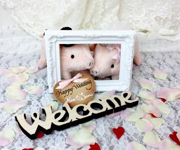 ウェルカムドール〔ラブリーぶーちゃん・ピンク〕手作りキット |装飾1|結婚式演出の手作りアイテム専門店B.G.
