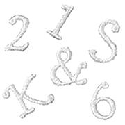 刺繍イニシャルレース