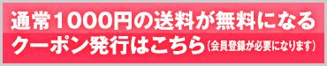 通常1000円の送料が無料になるクーポン発行はこちら(会員登録が必要になります)