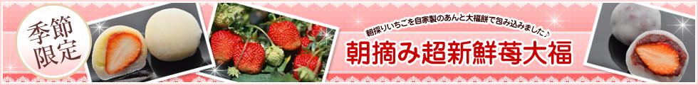 朝摘み超新鮮苺大福
