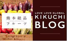 ラブラブグローバル菊池ブログ