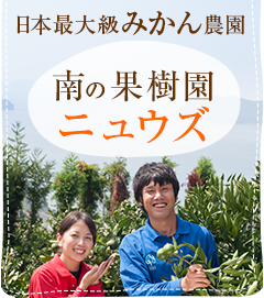 日本最大級のみかん農家 南の果樹園ニュウズ