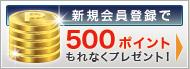 新規会員登録で500ポイ  ント