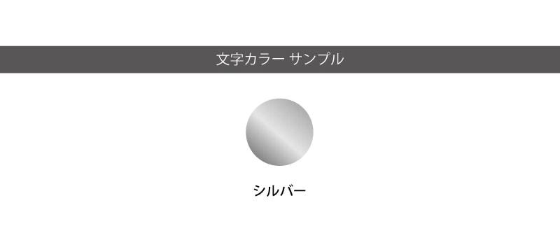 文字カラーサンプル シルバー