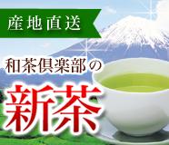 和茶倶楽部の新茶
